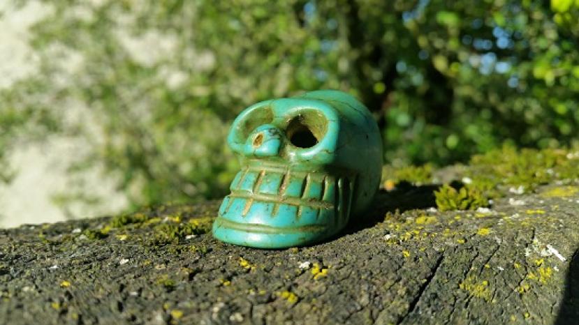 Rencontre avec les crânes de cristal : conférence et exposition de crânes maîtres anciens – COMPLET